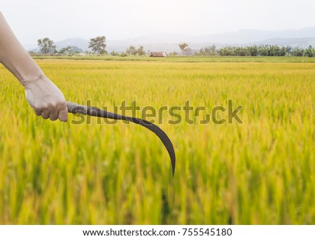 Farmers hook up
