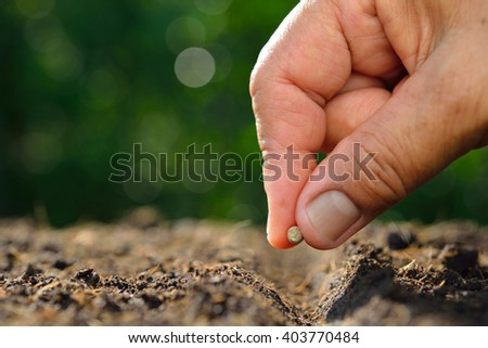 Close-up farmer's hand planting a seed in soil - stock photo