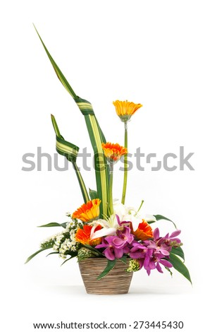 Close up flower bouquet in ceramic pot isolated on white, vanda, gerbera, lily, orchid - stock photo