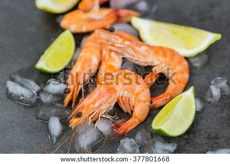 Close Up Food Still Life of Fresh Pink Cooked Shrimp Chilling on Melting Ice with Wedges of Fresh Lime as Garnish - stock photo
