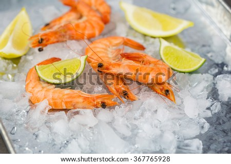 Close Up Food Still Life of Fresh Pink Cooked Shrimp Chilling on Metal Tray of Melting Ice with Wedges of Fresh Lime as Garnish - stock photo