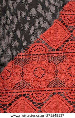 close-up fragment texture lace coral studio