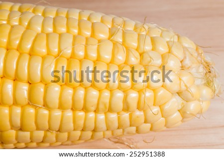 close-up fresh corn from garden on wood cutting boards in thailand - stock photo