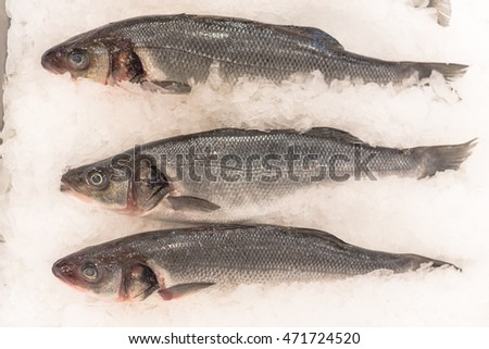 Stock images royalty free images vectors shutterstock for Stock fish for sale texas