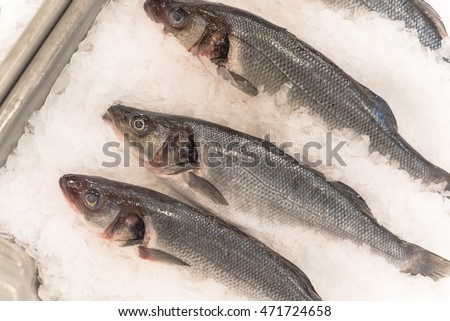 Stock images royalty free images vectors shutterstock for Fresh fish market houston
