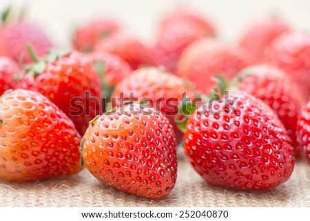 Close up fresh strawberries in natural background - stock photo