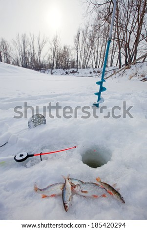 close-up freshly caught fish and a fishing rod near the hole on the frozen snow-covered river cloudy day - stock photo