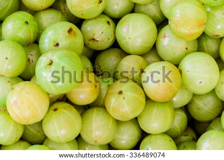 Close-up, full frame view group of fresh ripe Indian gooseberries in fruit stall at Little India Singapore. The dessert cultivars as luscious as the best apple, strawberry or grape. Gooseberry texture
