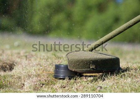 close up gasoline trimmer head equipment with nylon line cutting lawn grass to small pieces - stock photo