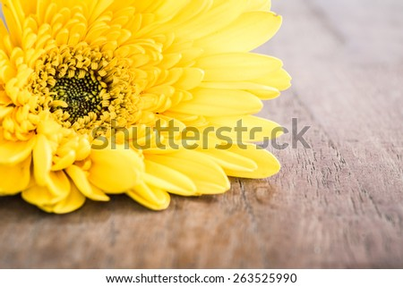 Close up Gerbera on wooden table - stock photo