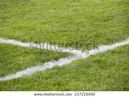close-up grass at soccer field with corner line - stock photo