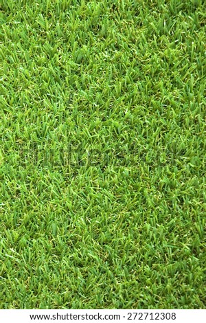 close up green grass texture background - stock photo
