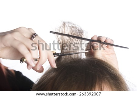 Close up Hairdresser Hands Cutting Hair of a Customer Using Scissors and Comb, Isolated on White Background.