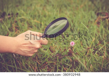 Close up human's hand exploring nature at flower with magnifying glass. Outdoors in the day time. Shallow depth of field (dof), selective focus on hand. Vintage style. - stock photo
