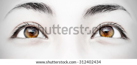 Close-up image of a woman's beautiful brown eyes - stock photo