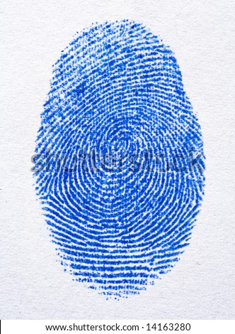 close up image of blue finger print - stock photo