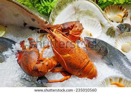 Close up image of fresh seafood on ice. Shallow depth of field with the focus on the lobster. - stock photo