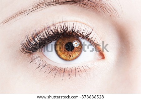 Close up image of human eye