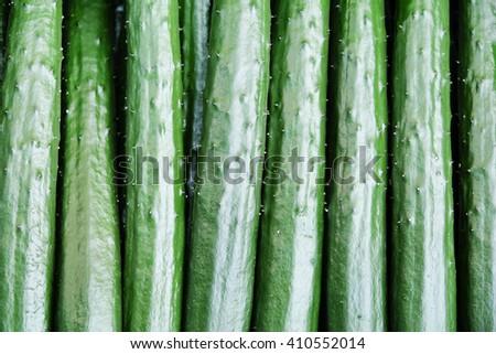 Close up image of Japanese cucumber,suhyo - stock photo