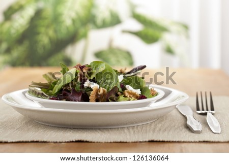 Close-up image of one serving of fresh green salad on the wooden table with blurred plants on the background - stock photo