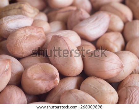 close-up image of peanuts - stock photo