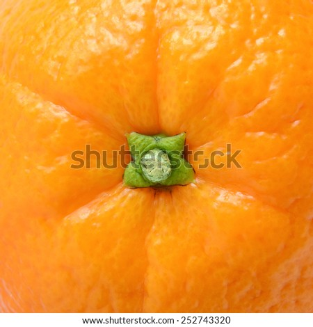 Close up Image of Ripe Juicy Orange - stock photo