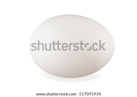 Close-up image of white egg on white background