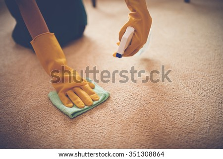 Close-up image of woman removing stain from the carpet - stock photo