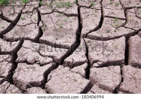 close-up isolated dry erosive soil with cracks in the field on a sunny day - stock photo