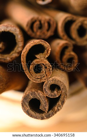Close up (macro) of cinnamon sticks with the ends facing camera to show their curls.  Shallow depth of field. - stock photo