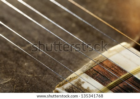 Close-up macro of the strings and the beginning of the neck of a Persian Tar musical string instrument. The Tar is a long-necked lute instrument, and the word 'tar' itself means 'string' in Persian.
