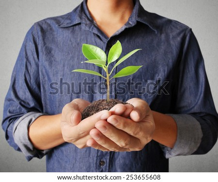 Close up man hands holding plant