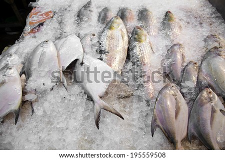 close up many raw fish in chinese market - stock photo