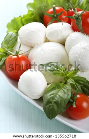 close up mozzarella basil and tomatoes on white dish