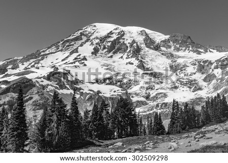 Close-up Mt.Rainer Black and White - stock photo