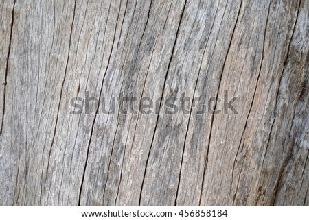 Close up natural old wood texture background with cracks