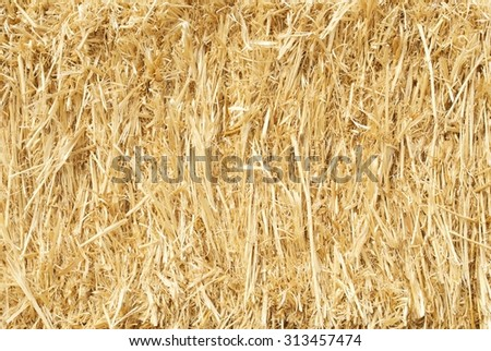 Close Up of a Bale of Straw - stock photo