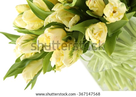 Close-up of a beautiful bouquet of white tulips in a glass vase. Isolated on white background - stock photo