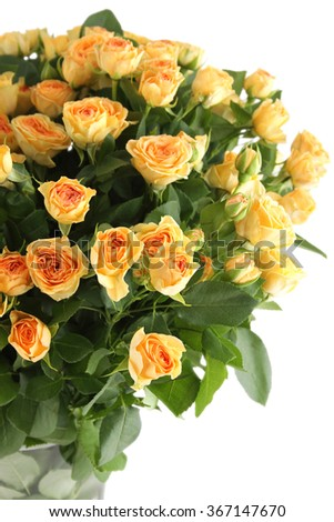 Close-up of a beautiful bouquet of yellow roses. Isolated on white background - stock photo