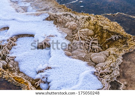 Close-up of a beautiful pattern of frozen bacteria near the yellowstone geyser in winter - stock photo