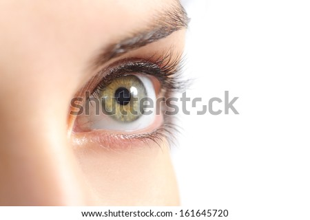 Close up of a beautiful woman green eye isolated on a white background               - stock photo