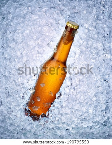 close up of a beer bottle in ice - stock photo