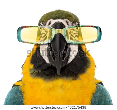 Close-up of a Blue-and-yellow Macaw, Ara ararauna wearing sunglasses, isolated on white - stock photo