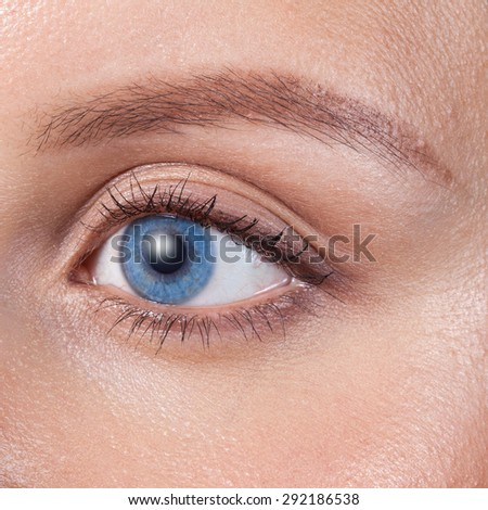 Close up of a blue woman eye