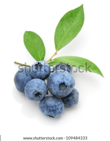 Close up of a blueberry branch isolated over white
