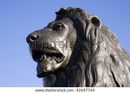 Close up of a bronze lion head at Trafalgar Square, London, England - stock photo