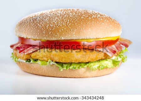 Close up of a burger on white background
