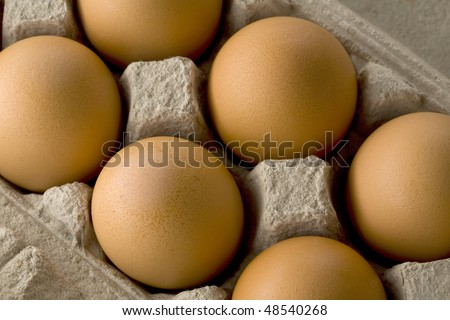 close up of a carton of brown eggs - stock photo