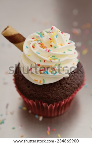 Close up of a chocolate sundae cupcake with colored sprinkles - stock photo