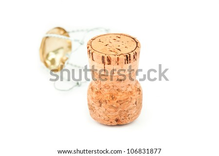 Close up of a cork and iron wire against a white background